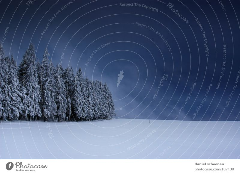Christmas card 1 Black Forest White Deep snow Hiking Leisure and hobbies Vacation & Travel Jinxed Mystic Abstract Background picture Fir tree Snowscape