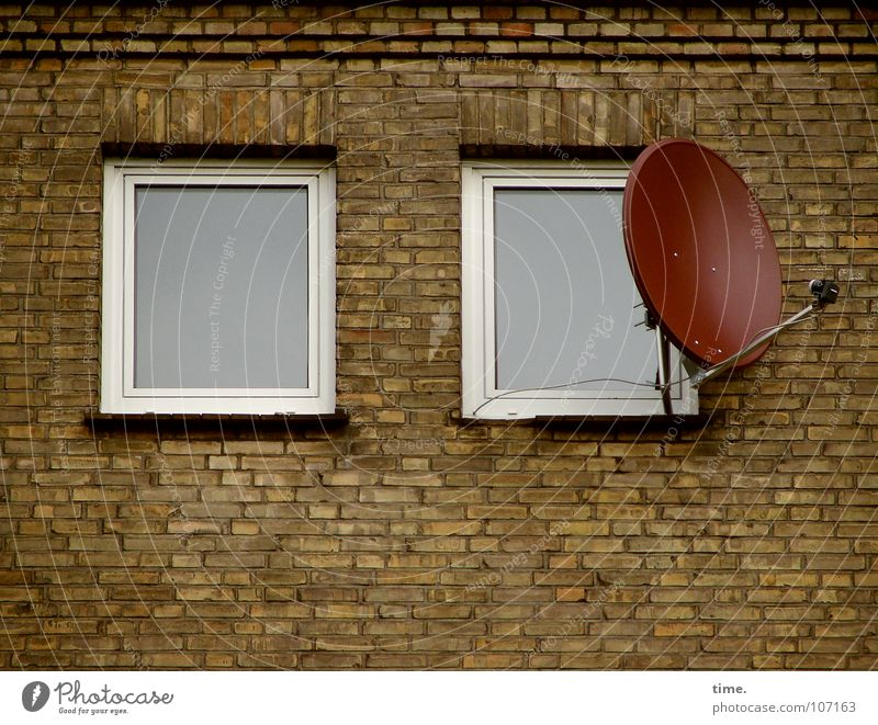 House (Residential Structure) Window Wall (building) Wall (barrier) Stone Idyll Gloomy Search Moving (to change residence) Balcony Television Brick Boredom Bowl