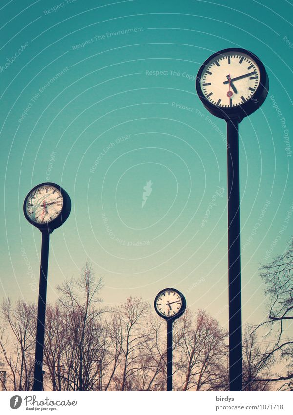 Clocks in the clock park in Düsseldorf, time Time Clock face Prompt Time management time change lifetime Spring Autumn Winter Tree Park Second hand Clock hand