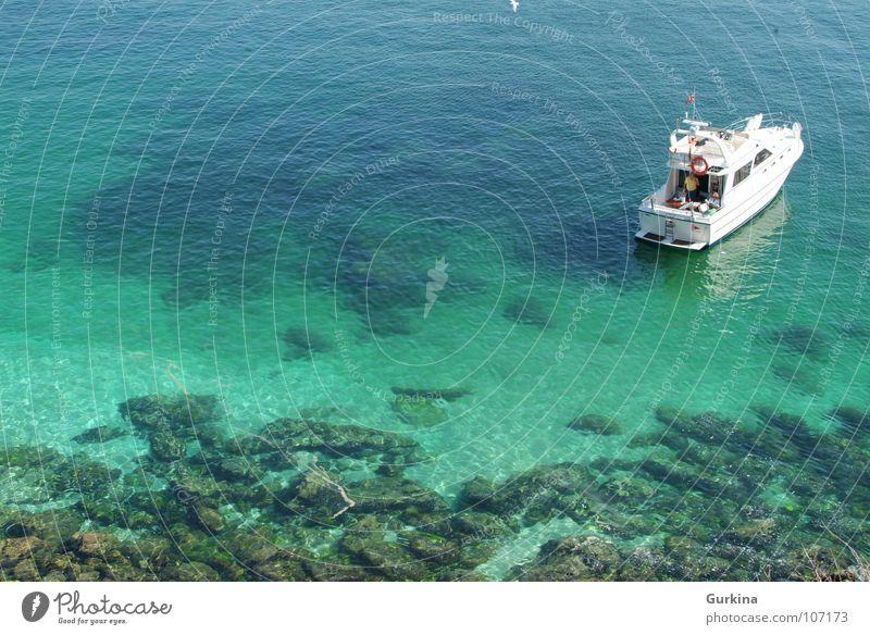 Ocean Summer Navigation Yacht Sport boats