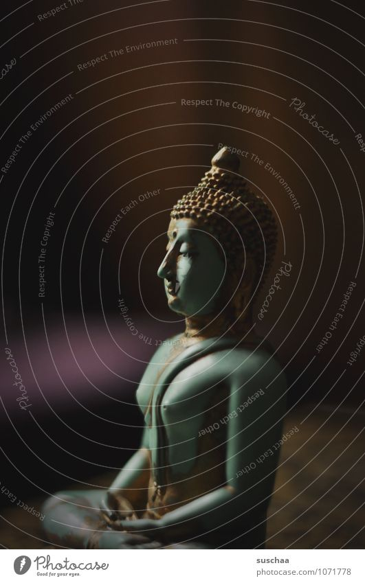 Relaxation Calm Power Plastic Peace Serene Belief Exotic Meditation Figure Famousness Attentive Buddha Buddhism Allegory