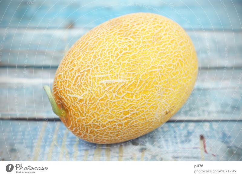 melon Nature Old White Yellow Fruit Beauty Photography Refreshment Dessert Juicy Vegetarian diet Consistency Object photography Gourmet Melon Portion