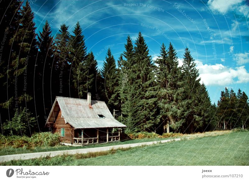Sky Green Blue Vacation & Travel Calm House (Residential Structure) Loneliness Forest Relaxation Meadow Grass Wood Lanes & trails Small Idyll Fir tree