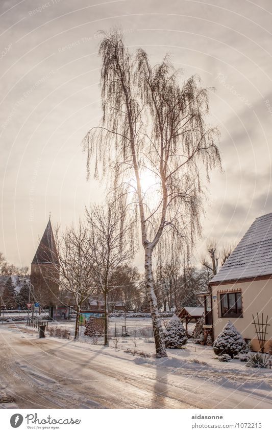 village Nature Sky Winter Beautiful weather Ice Frost Snow Lambrechtshagen Mecklenburg-Western Pomerania Europe Federal eagle Village Deserted Church