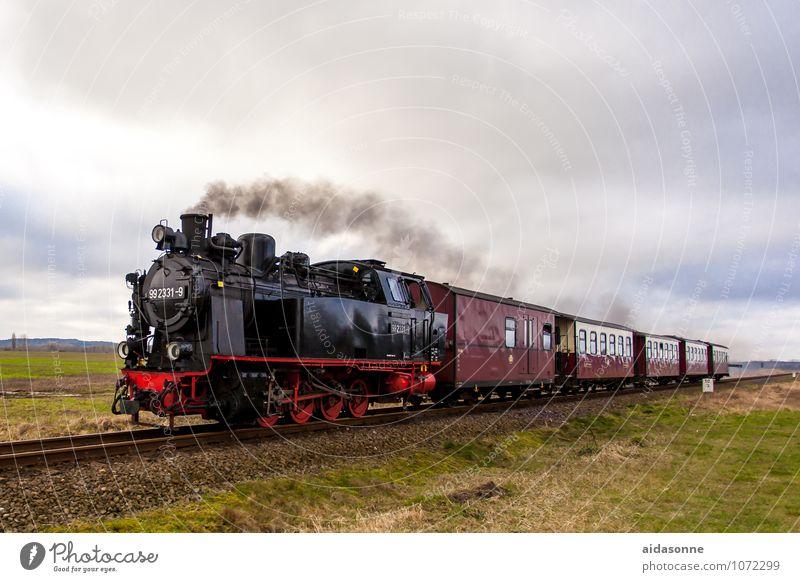 Vacation & Travel Railroad Driving Railroad tracks Engines Train travel Rail transport Passenger train Steamlocomotive Kühlungsborn Narrow gauge railroad