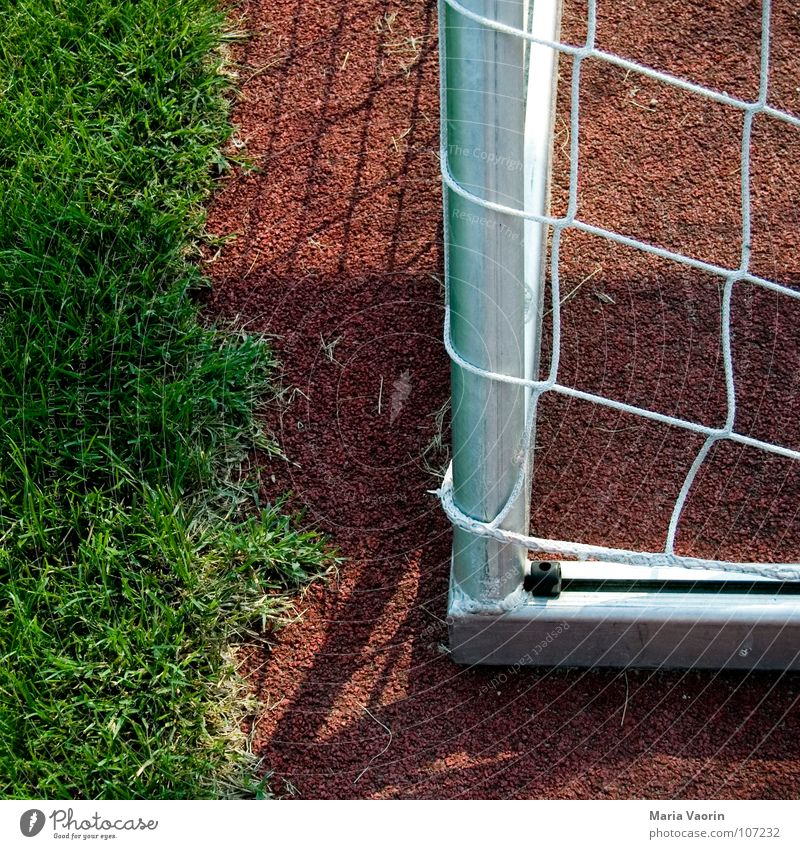 Joy Sports Playing Grass Soccer Success Corner Ball Lawn Net Gate Playing field Sporting event Doomed Lose Ball sports