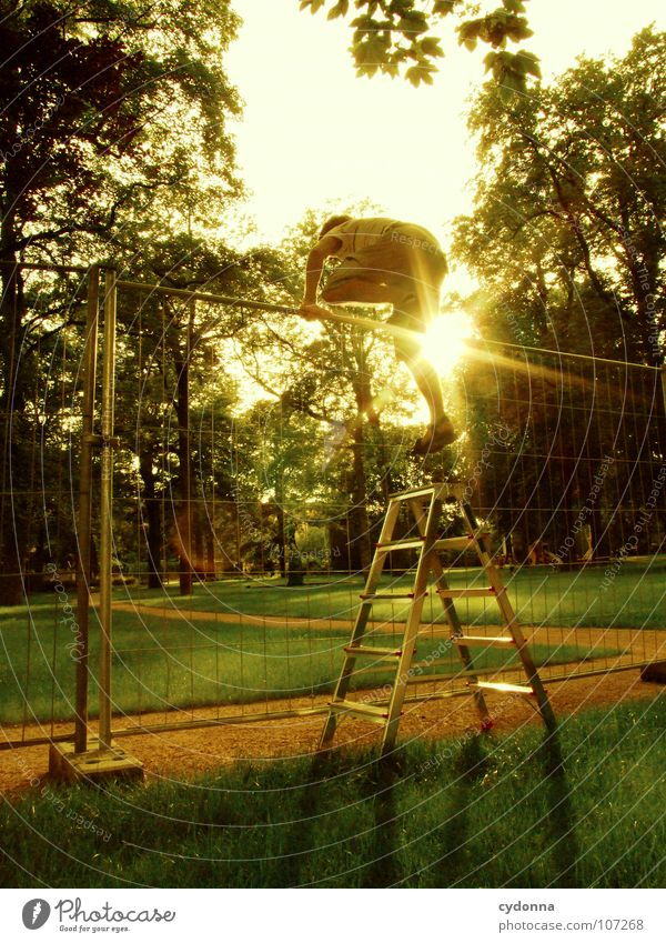 Human being Man Nature Green Sun Loneliness Forest Meadow Wall (building) Above Boy (child) Lanes & trails Garden Jump Park Work and employment