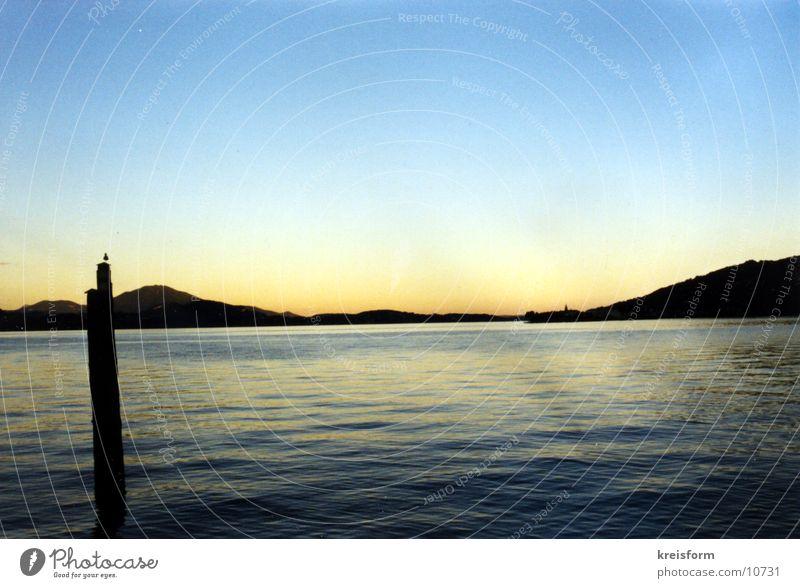 lone seagull Lake Sunset Horizon Landscape Water