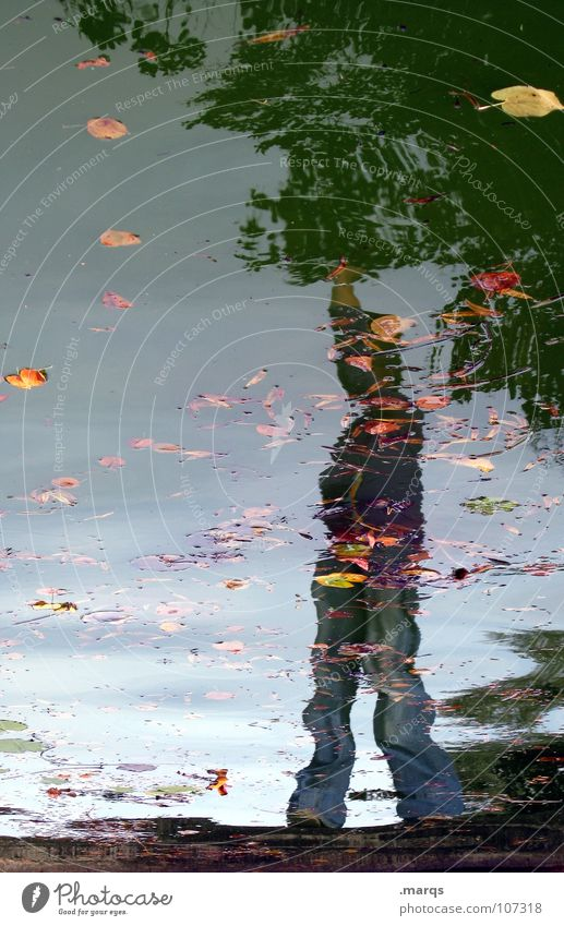 Human being Water Joy Leaf Autumn Freedom Think Contentment Waves Wet Success Stand Posture Well Pond Puddle