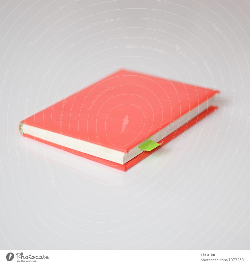 Green White Red To talk School Office Arrangement Book Academic studies Study Paper Planning Reading Education Write Contact