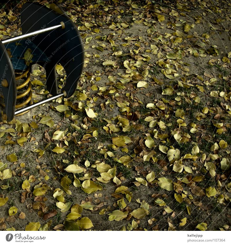 Green Leaf Yellow Autumn Playing Sand Earth Room Infancy Mouth Places Free Floor covering Lawn Farm Metal coil