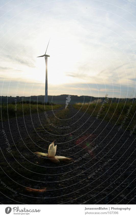 Nature Autumn Stone Lanes & trails Wind Lawn Wind energy plant Maize