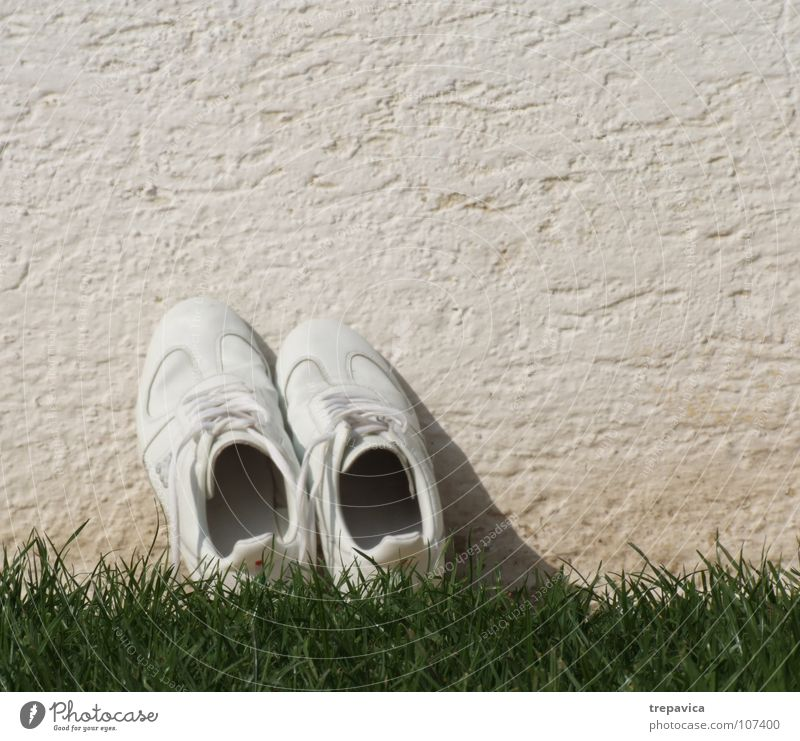 white-green Footwear White Grass Green Wall (building) Sneakers Dry Empty Summer Break Laundered Flower Meadow Clothing Playing Floor covering Feet Loneliness