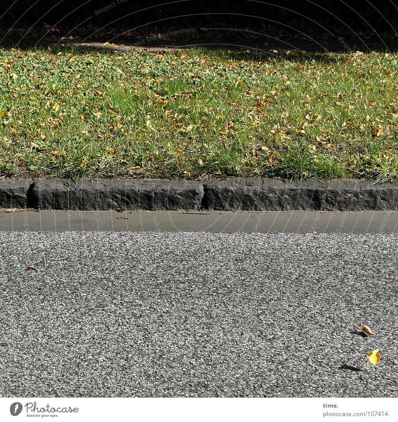 HerbstBlätterTanz has started Shadow Dance Autumn Wind Leaf Traffic infrastructure Street Stone Movement Asphalt Curbside 2 Wind chime Lawn Landing