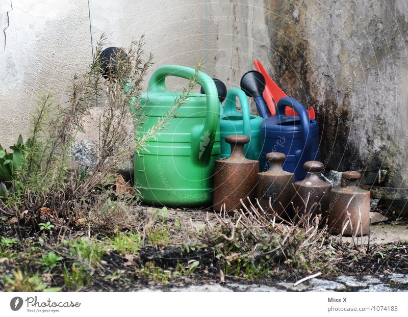 Krims and Krams Living or residing Garden Gardening Bushes Wall (barrier) Wall (building) Watering can Kitsch Odds and ends Old Weights Kilogram Pound Corner
