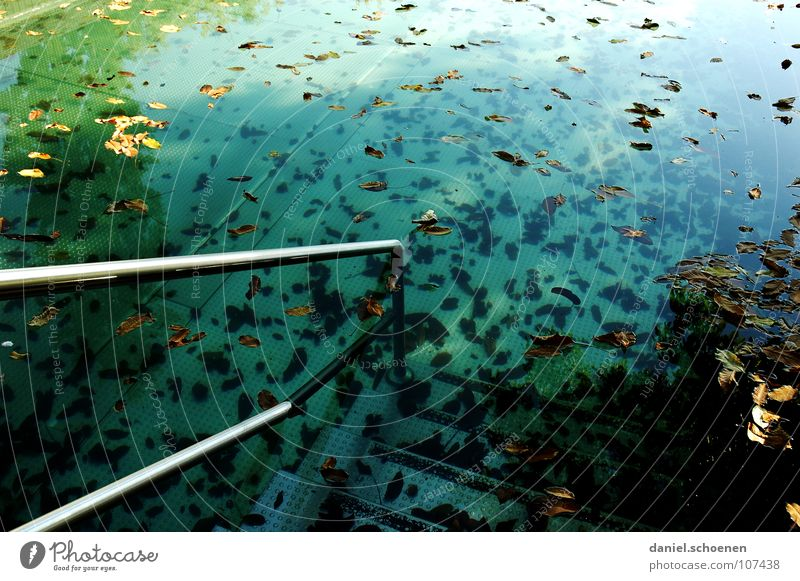 the other day at the outdoor pool Swimming pool Open-air swimming pool Autumn Holiday season End of the season Leaf Cyan Green Background picture Abstract Moody