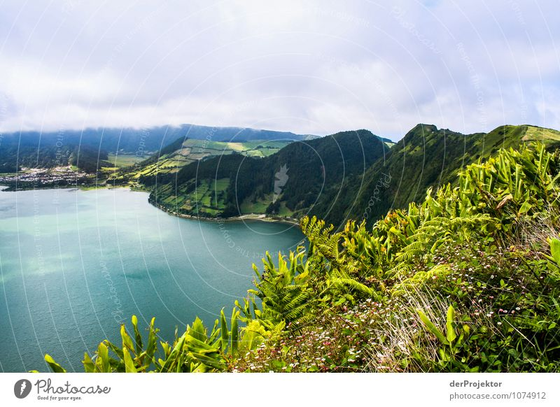 Crater ridge on Sao Miguel Vacation & Travel Tourism Adventure Far-off places Freedom Mountain Environment Nature Landscape Plant Animal Elements Summer