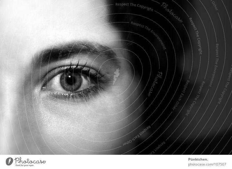 Human being Woman Face Eyes Hair and hairstyles Skin Near Eyelash Lens Eyebrow Pupil Mascara Vision Zoom effect