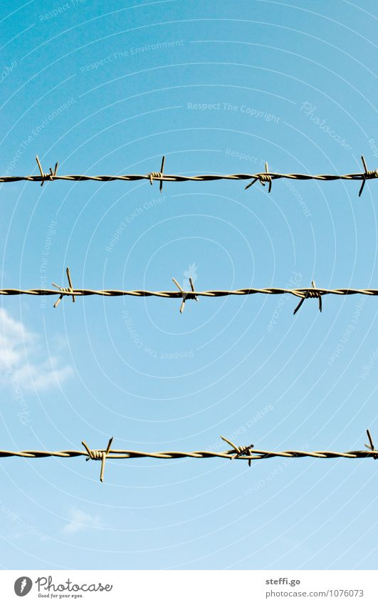 captured. Sky Beautiful weather Aggression Old Threat Rebellious Thorny Perspective Safety Symmetry Divide Far-off places Fence Border Barbed wire