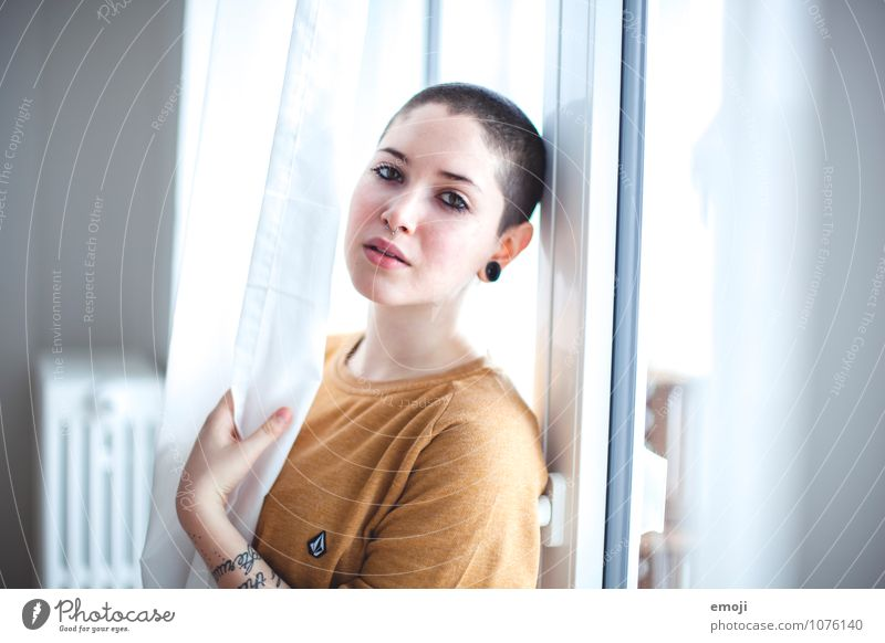 SHE Feminine Androgynous Young woman Youth (Young adults) 1 Human being 18 - 30 years Adults Short-haired Bald or shaved head Beautiful Uniqueness Colour photo