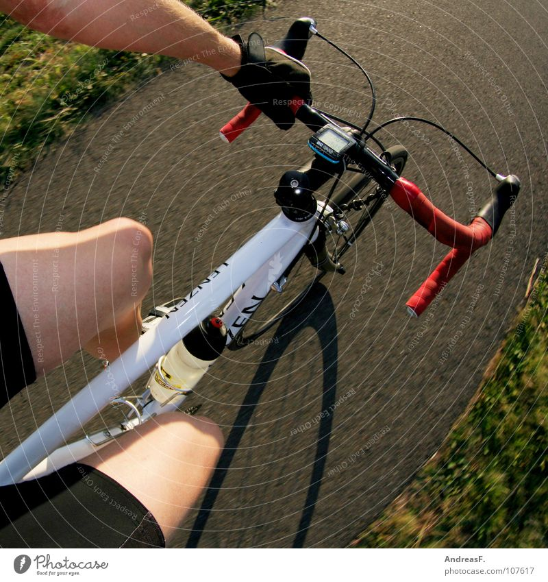 Vacation & Travel Summer Sports Playing Legs Healthy Contentment Bicycle Leisure and hobbies Transport Speed Driving Fitness Cycling Athletic Cycling tour
