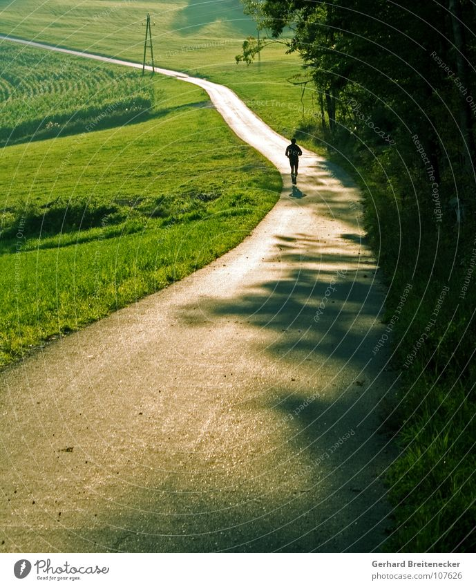 Nature Sun Loneliness Environment Landscape Street Meadow Sports Autumn Playing Movement Spring Lanes & trails Healthy Field Walking