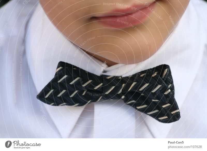 Child White Beautiful Joy Black Boy (child) Elegant Arrangement Shirt Fine Obedient Bow tie Petit bourgeois Noble