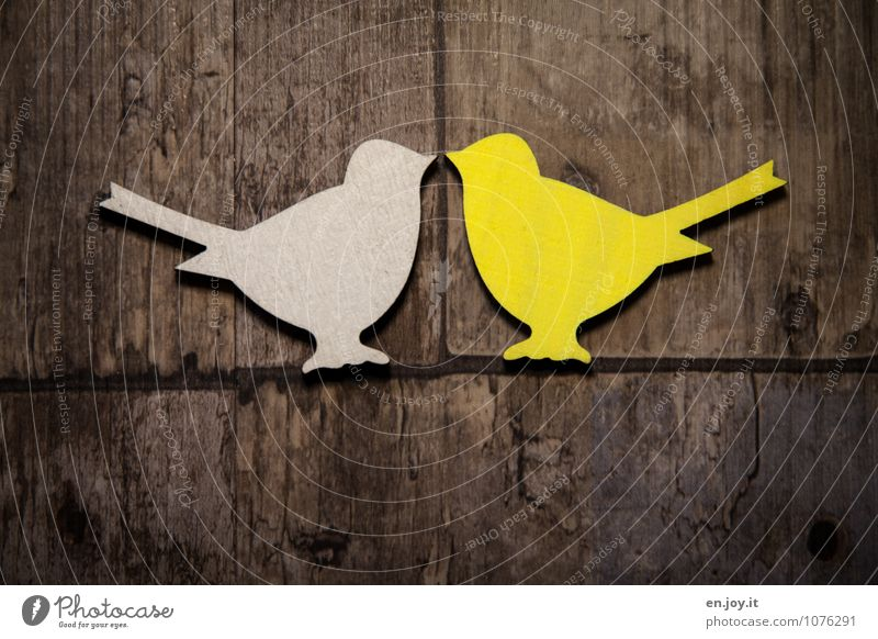 White Animal Yellow Love Happy Wood Feasts & Celebrations Brown Bird Together Friendship Birthday Happiness Joie de vivre (Vitality) Communicate Future