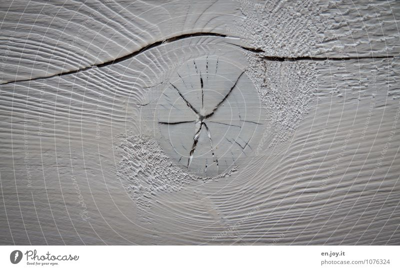 wooden eye Agriculture Forestry Wood Bright Round White Decline Wooden board Wood grain Paintwork Varnished Crack & Rip & Tear Column Broken Old Roof beams