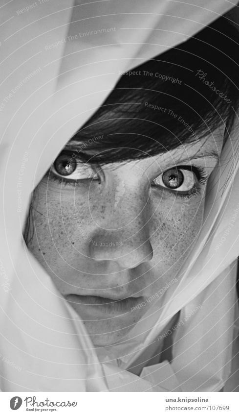 °voilée Young woman Youth (Young adults) Woman Adults Eyes Cloth Paper Looking Box up Folds Wrinkles Hooded (clothing) Freckles Laminate Rag transparent paper