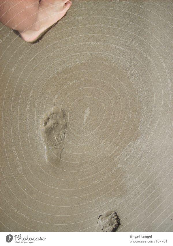 Ocean Beach Feet Sand Wet Tracks Footprint
