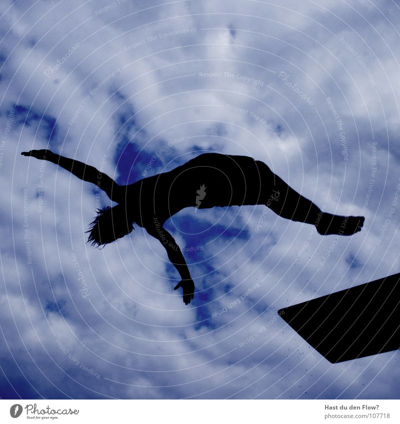 penguin Penguin Jump Springboard Pants Tasty Beautiful Clouds Silhouette Summer 5 3 Hover Salto Backwards Back somersault Open-air swimming pool Swimming pool