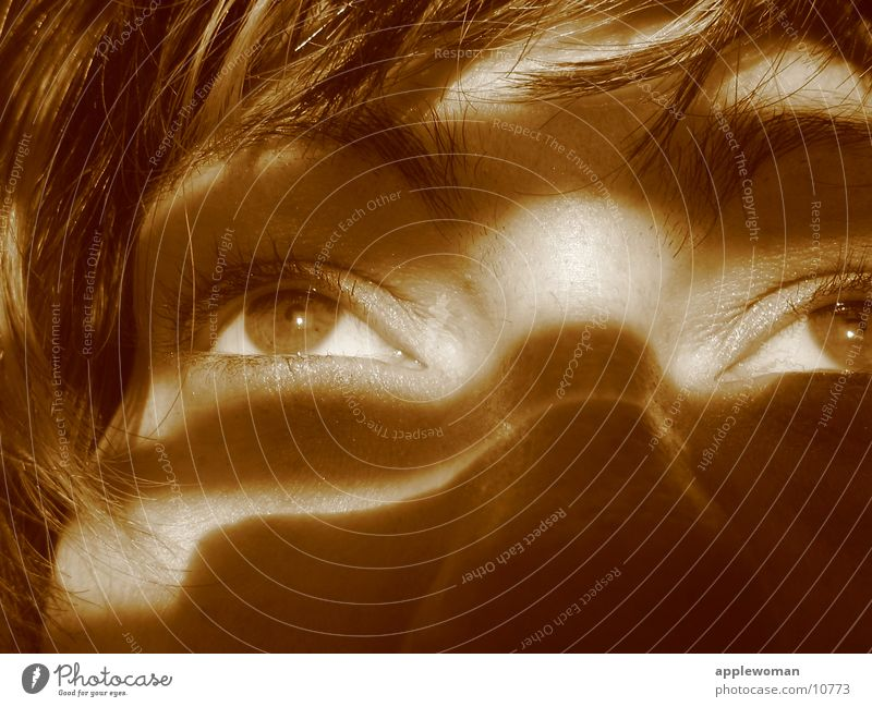 Woman Face Eyes Head Sepia Disk