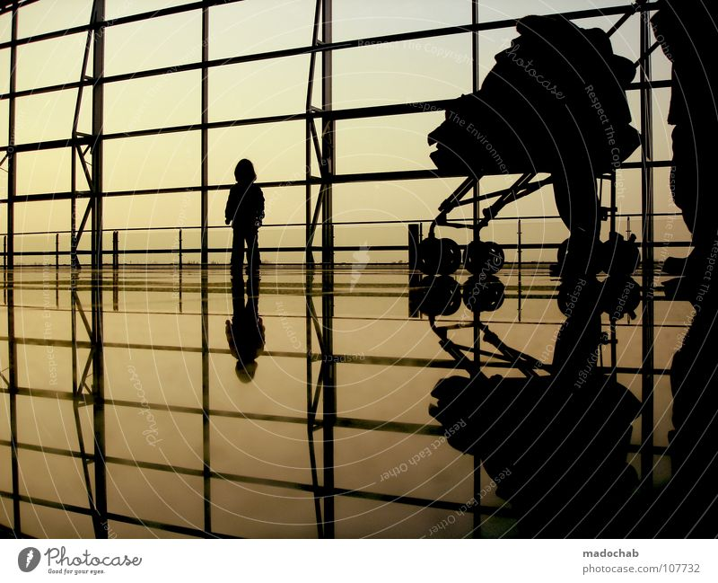 5 THREE Silhouette Human being Man Woman Life Reflection Wall (building) Offspring Family planning Legacy Bequest Generation Sky Longing Wanderlust Moody