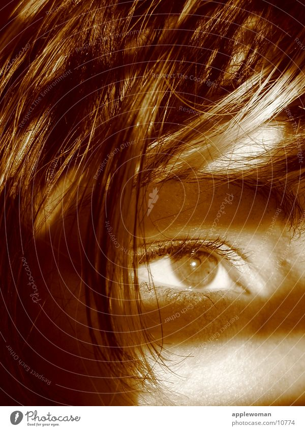 watching Woman Light Looking Eyes Shadow Sepia