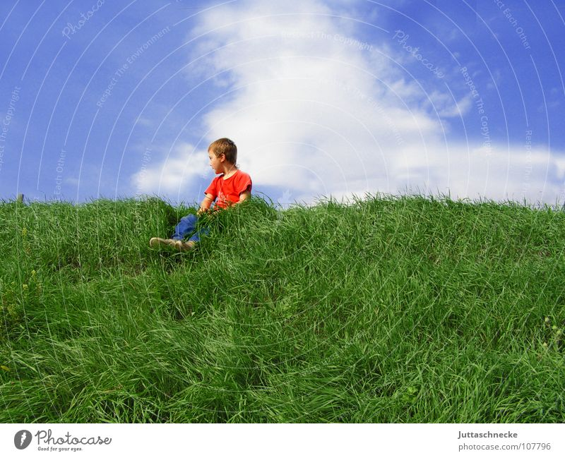 Child Sky Blue Green Red Clouds Grass Boy (child) Freedom Above Happy Sit Contentment Success Break T-shirt