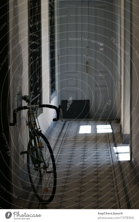 Wheel in the wide corridor Living or residing Flat (apartment) House (Residential Structure) Moving (to change residence) Hallway Racing cycle Bicycle Old town