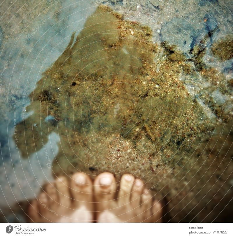 too wet .. ? Lake Toes Dirty Stand Mud Leaf Reflection Cold Wet Autumn seawater Water Feet Sand Stone Swimming & Bathing Barefoot