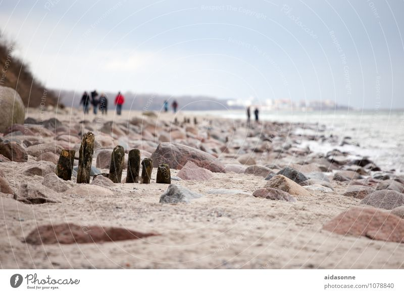 Loneliness Landscape Calm Winter Coast Sand Germany Hiking Beautiful weather Baltic Sea Serene Wanderlust Boredom Caution Mecklenburg-Western Pomerania