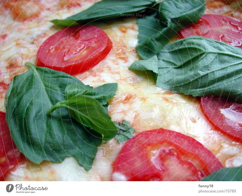Nutrition Warmth Physics Tomato Pizza Cheese Food Vegetable Mozzarella