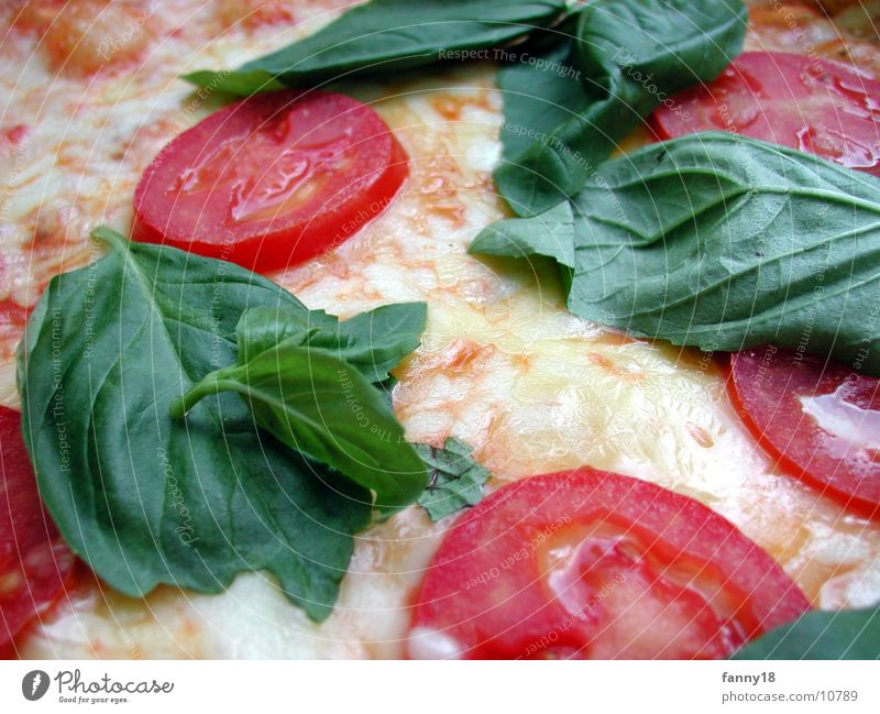 Nutrition Warmth Physics Tomato Pizza Cheese Food Vegetable Mozzarella