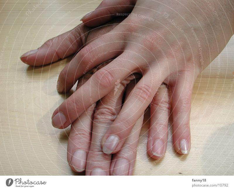 Hands I Woman Feminine Arm
