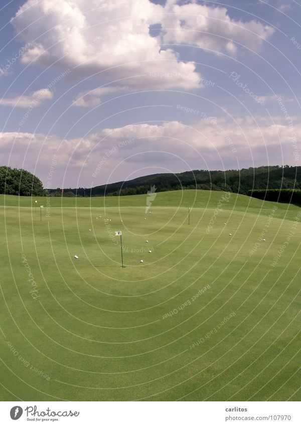 Green Sports Ball Lawn Leisure and hobbies Anger Golf Hollow Aggravation Frustration Handicapped Practice Golf course Haircut Golf ball