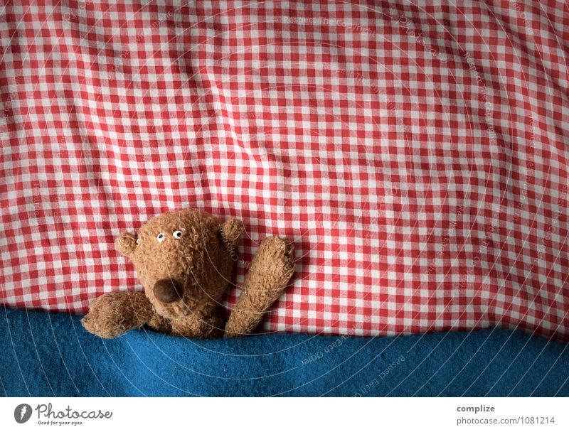 Bear in bed Joy Healthy Health care Nursing Well-being Relaxation Calm Flat (apartment) Bed Children's room Bedroom Animal Love Lie Dream Cute Cuddly toy Plush