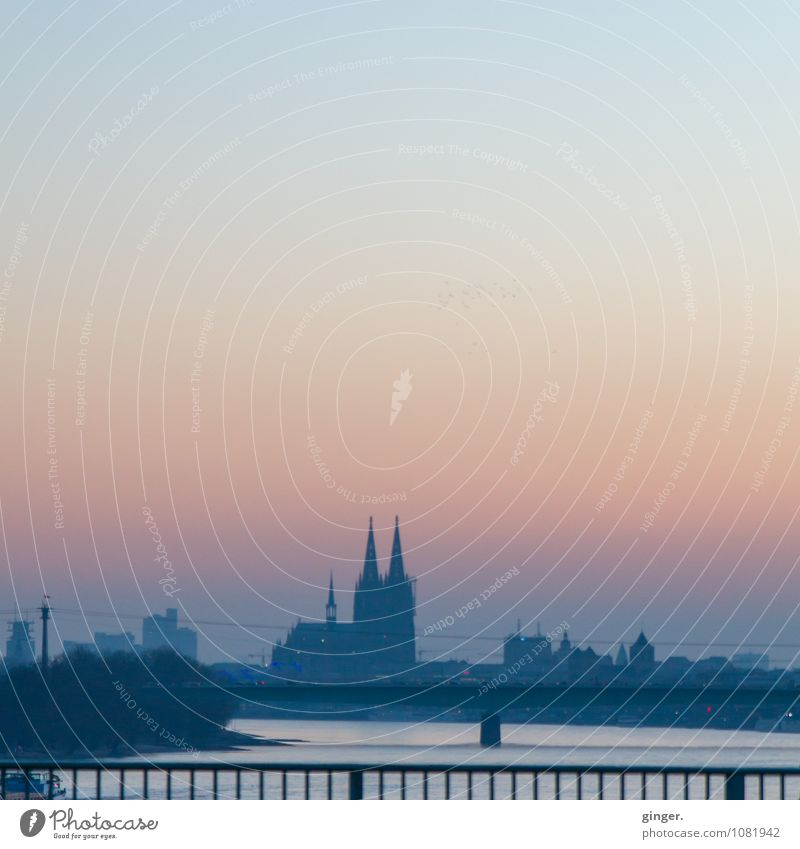 Zo Huss Cologne Town Downtown Skyline House (Residential Structure) Church Dome Manmade structures Building Tourist Attraction Landmark Cologne Cathedral