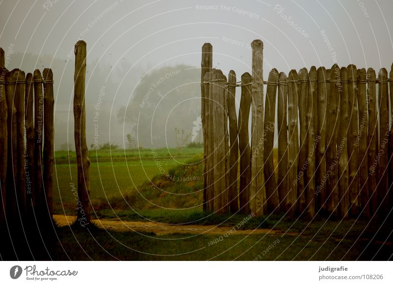 Nature Colour Meadow Wood Wall (barrier) Lanes & trails Fog Break Science & Research Seasons Manmade structures Historic Fence Tree trunk Pole Observatory