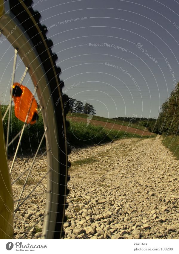 Autumn Leisure and hobbies Stupid Gravel Blue sky Mountain bike Weekend Bicycle Risk of accident
