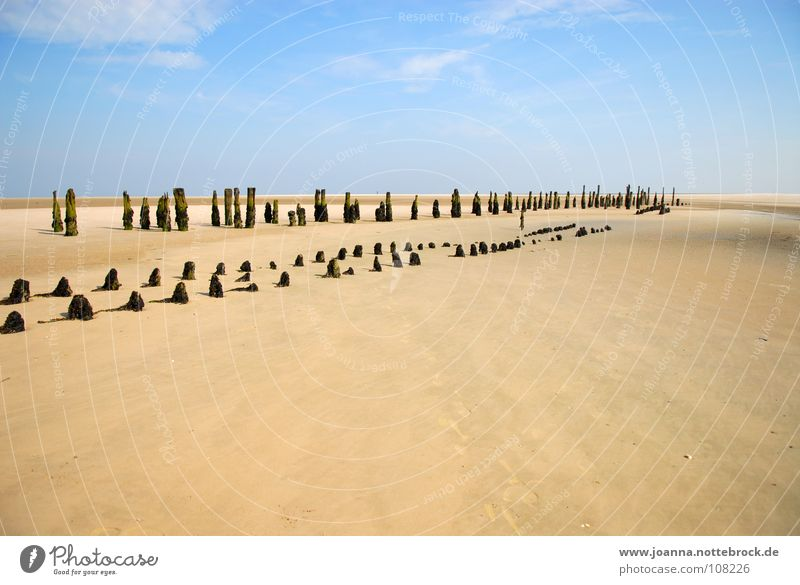 On the beach Vacation & Travel Relaxation Far-off places Calm Bushes Beach Think Trip Wangerooge Grief Contemplative Withdrawn Search Find Reach Longing Coast