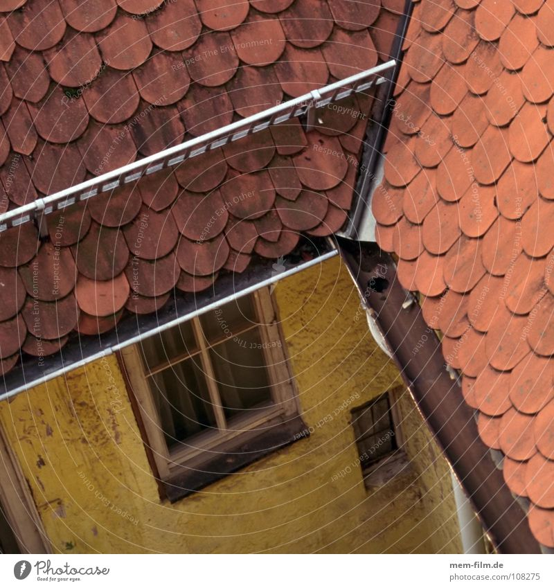 roof top view Roof Roofer Yellow House (Residential Structure) Farm Brick Wood Roof ridge Skylight Pattern Window Roofing tile Craft (trade) Historic Detail Old