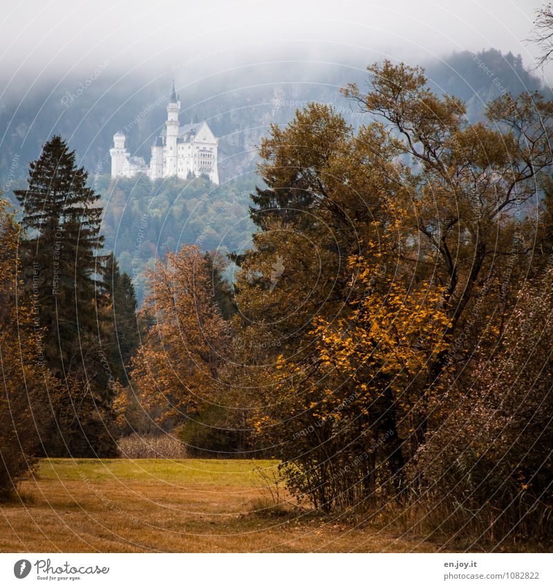 Once upon a time... Vacation & Travel Tourism Trip Sightseeing Mountain Nature Landscape Plant Autumn Bad weather Fog Tree Grass Bushes Meadow Forest Pre-alpes